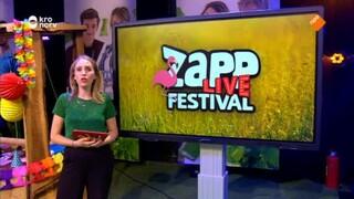 Zapplive Festival - Blok 12