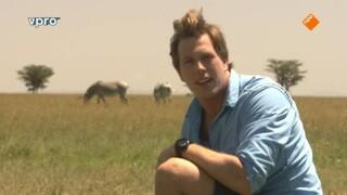 Freeks Wilde Wereld - Kenia - Kuddedieren