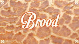 Heel Holland Bakt - Brood