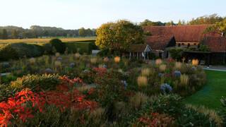 Vijf seizoenen - De tuinen van Piet Oudolf