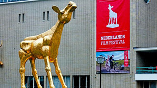 Tv Show - Tv Show: Het Nederlands Film Festival