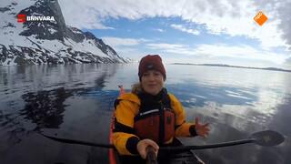 Nienke spot walvissen tijdens het kajakken