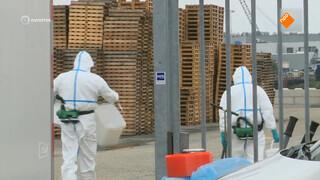 Kankerverwekkende asbest-vezels al zeker twee jaar op de markt