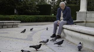 Attenborough's Rariteitenkabinet: De weg vinden
