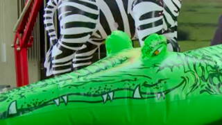 Op de krokodillenboerderij