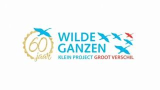 Wilde Ganzen - Ethiopië