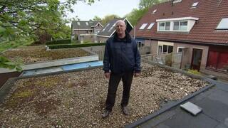 Lak aan 'n gratis dak