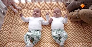 Identieke tweeling is niet identiek