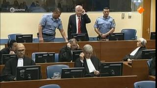 Einde Joegoslaviëtribunaal in zicht na veroordeling Mladic
