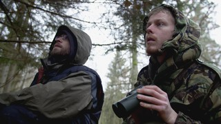 Oorlog in het bos