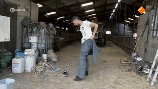 Omar op de boerderij