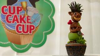 Cupcakecup - Cupcakecup 2017 Voorronde 2