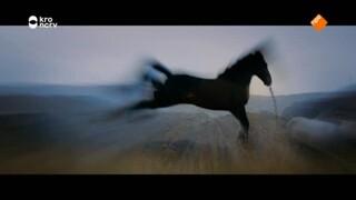 Zappbios - Stormwind - 3: Op Weg Naar Ora