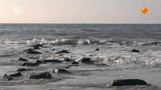 De Boeddhistische Blik: In de schoot van de zee