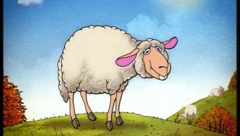 Hoe eet een schaap?