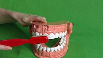 Poets je tanden