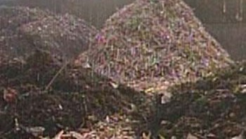 Van groenbak tot compost