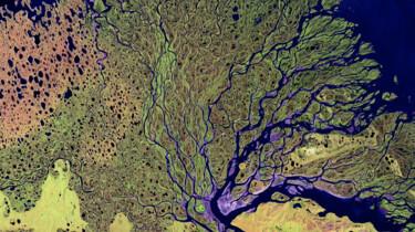 Wat is een riviermonding?