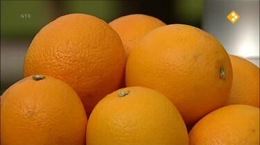 Nieuws uit de natuur: Fruit