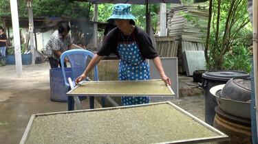 Papier maken van ananasblad