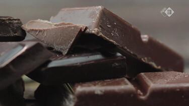 Broodje Gezond in de klas : Hoe gezond is chocola?