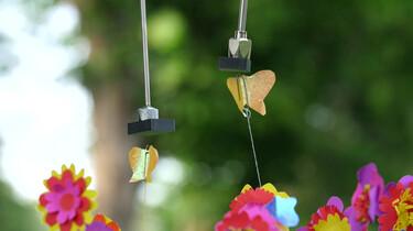 Hoe laat je papieren vlinders vliegen?