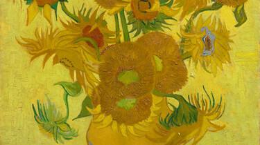 Dit ben ik: Vincent van Gogh: De zonnebloemen van Vincent uit Arles