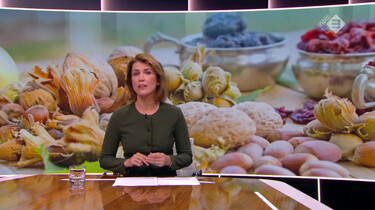 Nieuwsuur in de klas: Vlees of vegan?