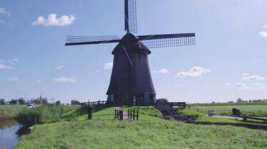 Het ontstaan en de inrichting van Nederland : Hakhoutbossen en windenergie