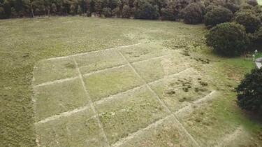 Het ontstaan en de inrichting van Nederland : Boerenlandschap in de ijzertijd