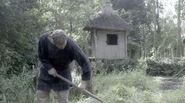 Het ontstaan en de inrichting van Nederland : Terug naar het boerenlandschap