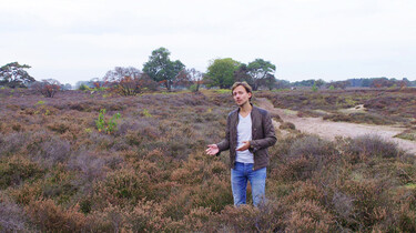 Het ontstaan en de inrichting van Nederland : Verkaveld landschap in de 19e eeuw