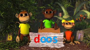 Letterjungle: De letter d: doos