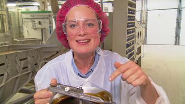 Hoe wordt drop gemaakt?: Van zoethoutwortelsap naar snoepje