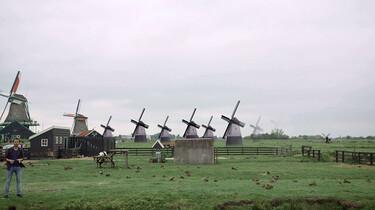 Het ontstaan en de inrichting van Nederland : Steden in de Hollandse Gouden Eeuw