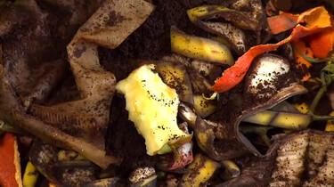 Hoe maak je een wormenhotel?: Drie verdiepingen compost, water en gft