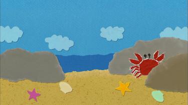 Welk zeedier heeft acht poten?
