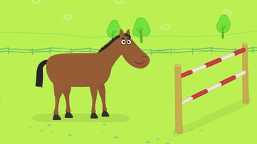 Hoe springt een paard?