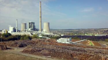 Is biomassa milieuvriendelijk?