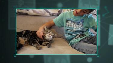 Echt gebeurd: kat redt kind