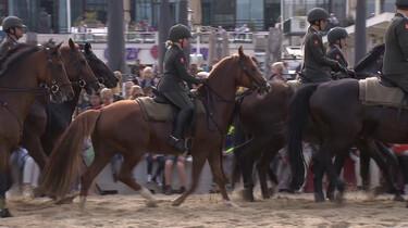 Hoe train je paarden voor Prinsjesdag?: Oefenen met mensen, muziek en vuurwerk