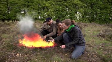 Hoe ontstaan natuurbranden?: Van vonk tot bosbrand