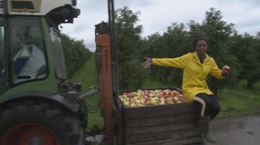 Het Klokhuis: Appels