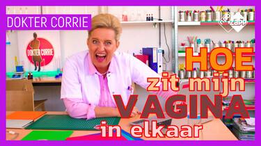 Hoe zit mijn vagina elkaar?: Dokter Corrie over hoe een vagina eruitziet