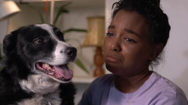 Kunnen dieren huilen?: Huilen zonder tranen