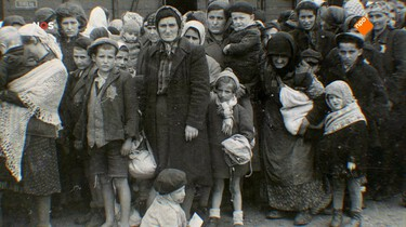 Bevrijdingsjournaal januari 1945: 28 januari 1945: de verschrikkingen van Auschwitz