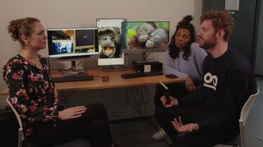 Hebben dieren gevoelens?: Dieren spiegelen elkaars emoties