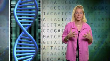 Het Klokhuis: DNA veranderen