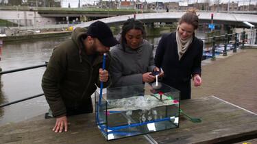 Hoe zorg je dat plastic niet in de zee komt?: Plastic opvangen met bubbeltjes