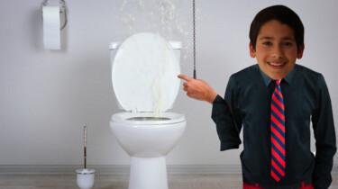 Wanneer is de wc ontstaan?